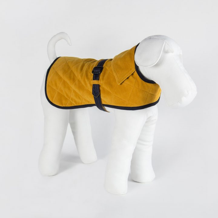 made-to-measure double-sided waterproof yellow and blue dog cloth