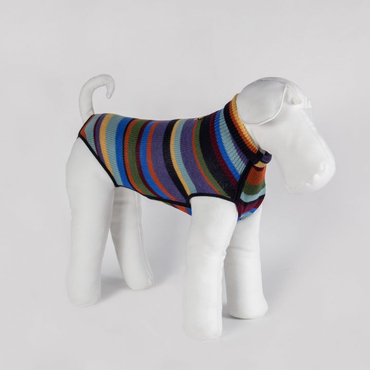 tailored knitted clothing for dogs in multicolor striped wool