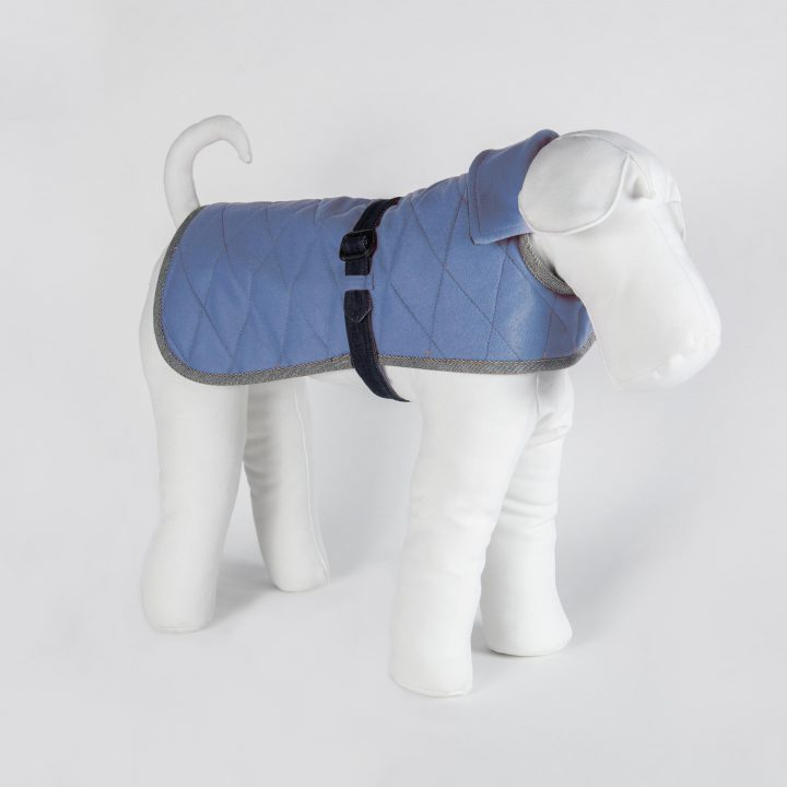 tailored double-sided dog coat in denim and blue cashmere