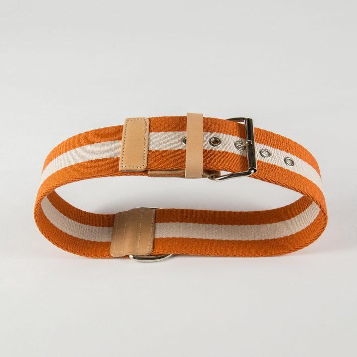 collare per cani in tessuto arancione e pelle