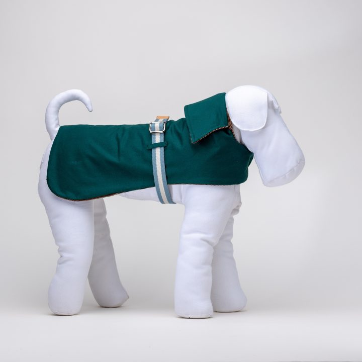 Designer's dog coats and raincoats. forest rain rainciat