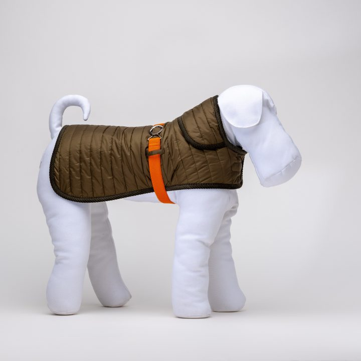 green quilted waterproof coat for dogs with orange belt