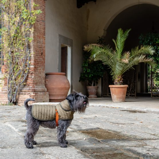 GREEN-ORANGE&QUILT RAIN, cappottino impermeabile, trapunta verde militare e arancione, cane Schnauzer Fausta