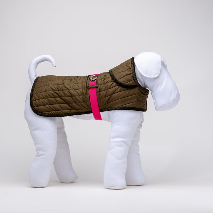 green quilted waterproof coat for dogs with pink belt
