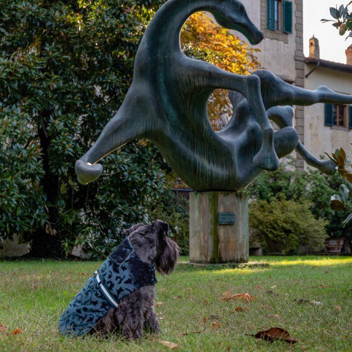 Cappottino per cani velluto jaquard color ottanio, double face
