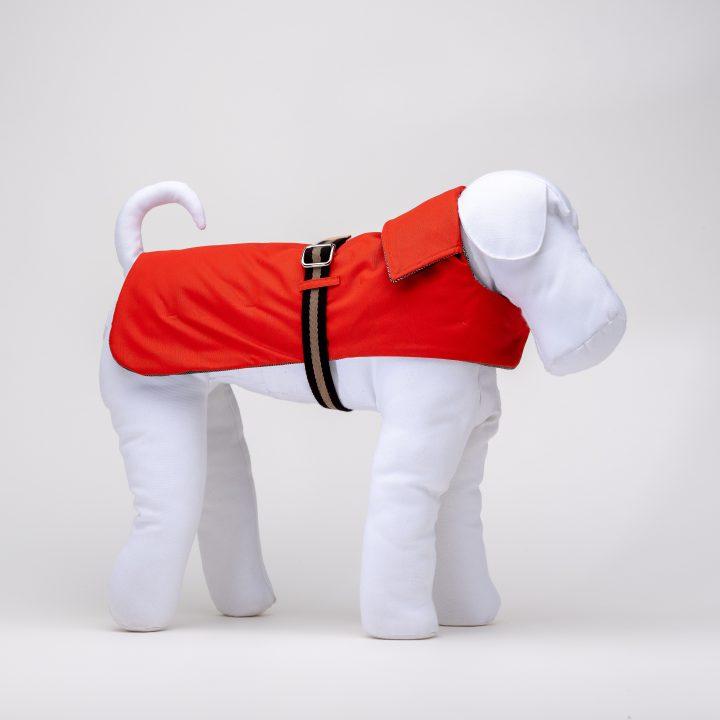 impermeabile per cani, cappottino per cani, double face, indossato da manichino