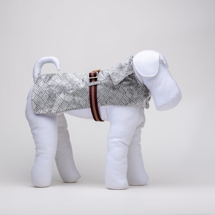 made-to-measure waterproof dog clothing in silver color velvet