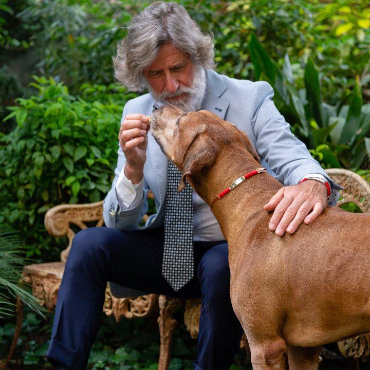 Scarlet Bar-tag indossato da uomo e da cane