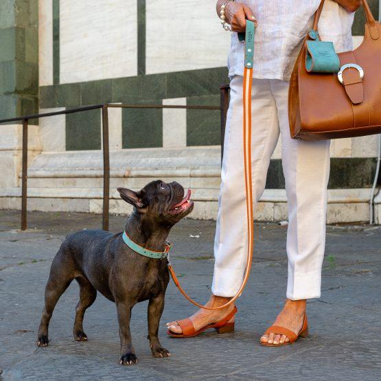 Guinzaglio fashion con cane bulldog francese Nabuck Celestial Leash, realizzato in nabuk con moschettone e rivette in ottone