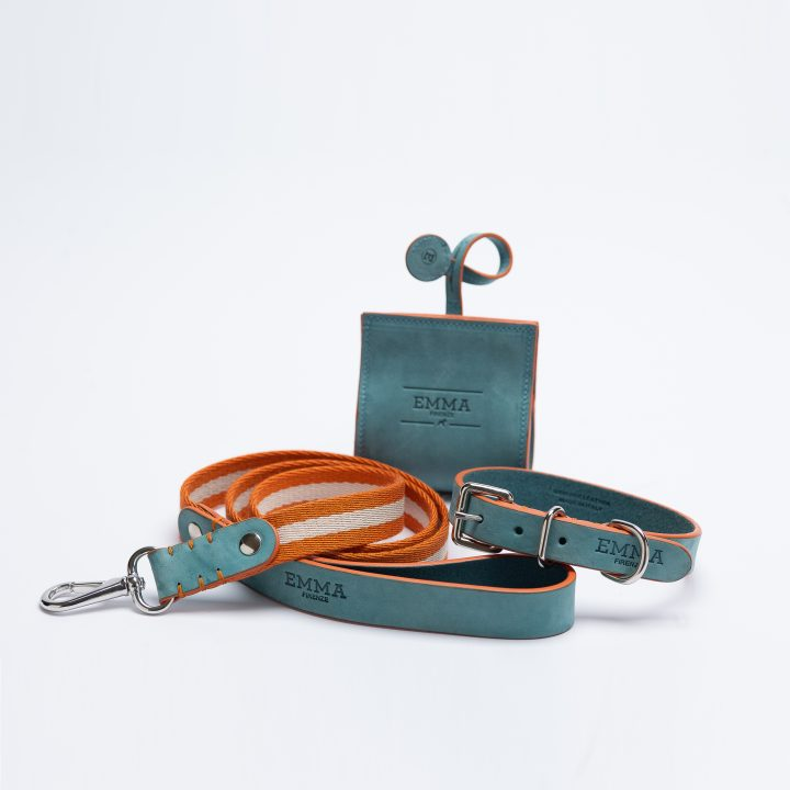 Collezione accessori per cani fashion Nabuk celestial leash, collar and bag