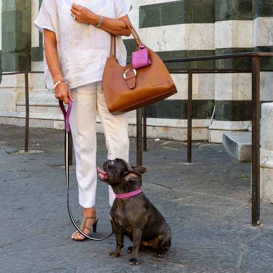 collare fashion per cani bulldog francese pelle nabuk a firenze