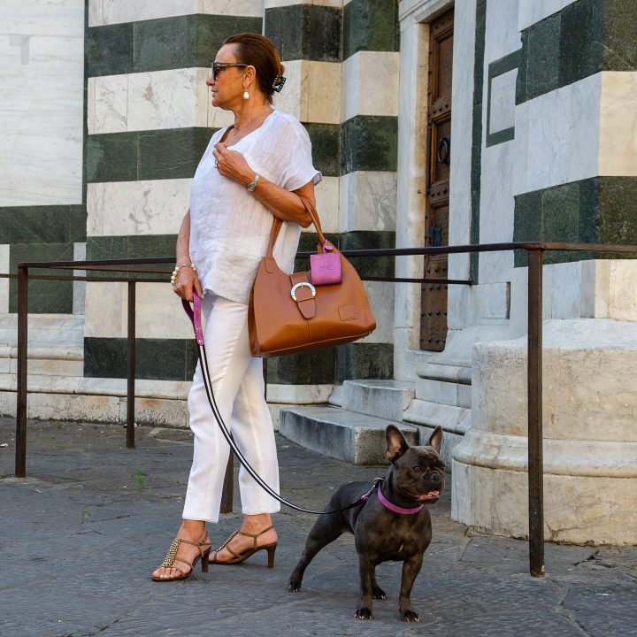 guinzagli fashion per cani bulldog francese a Firenze