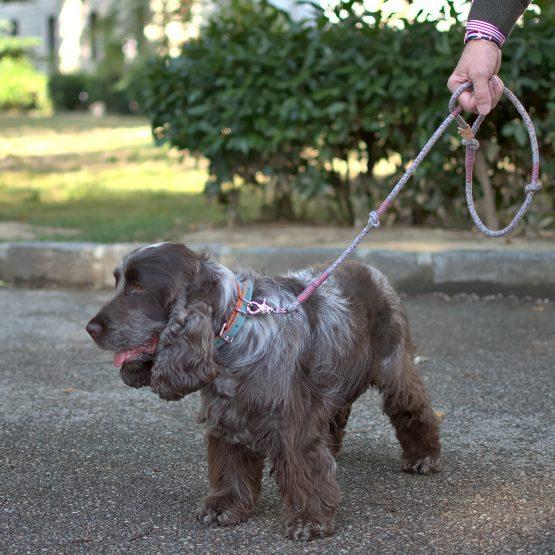 Guinzaglio per cani artigianale, realizzato con materiali riciclati, fashion