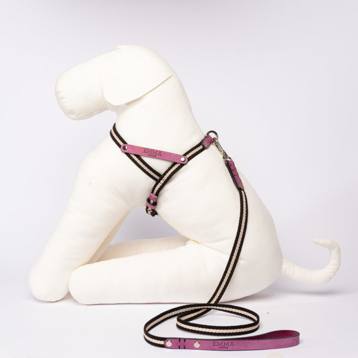 harness in fuchsia nubuck leather and fabric