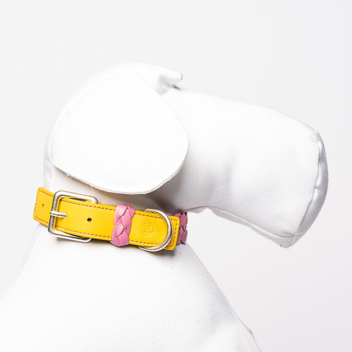 collar for dogs in pink and yellow leather