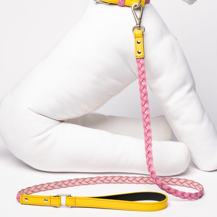 leash for dogs in pink and yellow leather