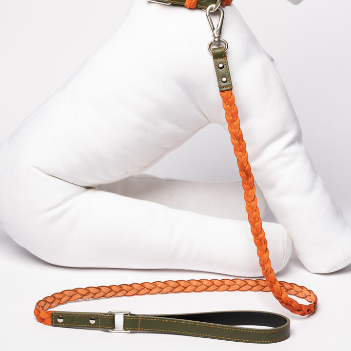 leash for dogs in orange and green leather