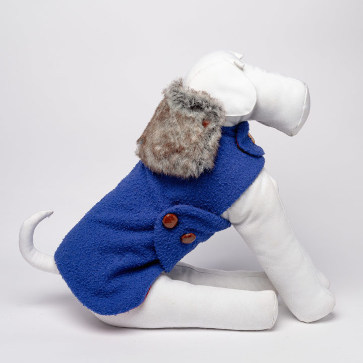 made-to-measure water-proof dog clothing in cobalt blue casentino fabric