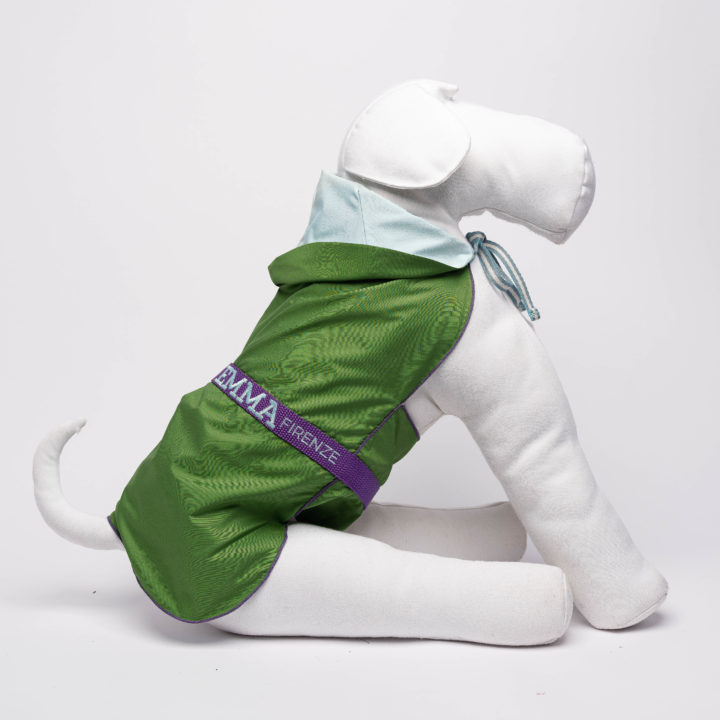 meadow green tailor-made raincoat for dogs with pale blue lining